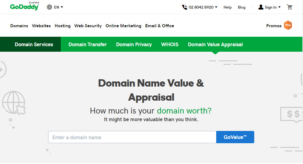 GoDaddy Domain Name Value Tool
